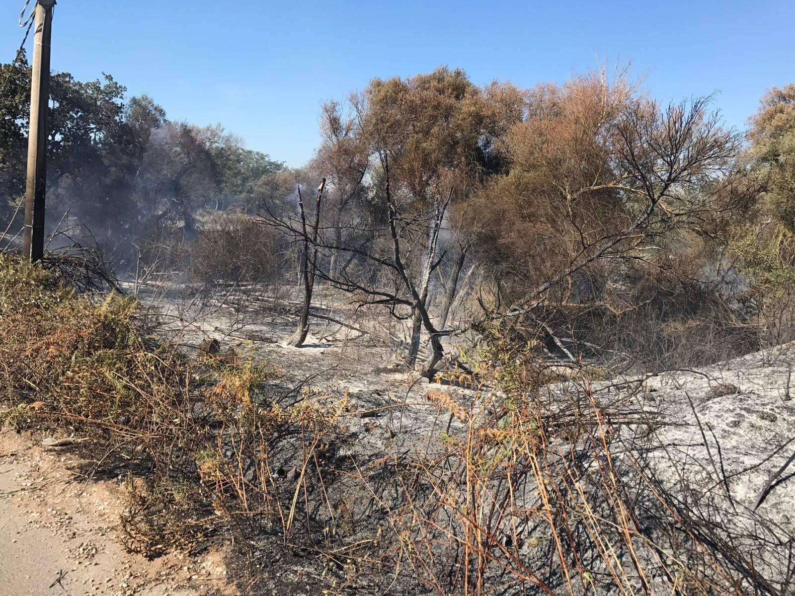 Terracina, fiamme a Monte Leano lambiscono la località balneare