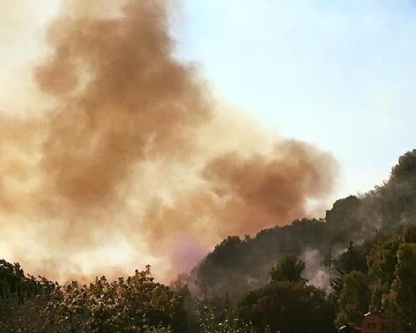 Incendio in collina a Terracina (foto Anna Fusco)