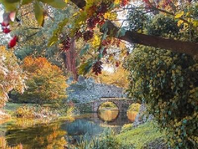 Iger Of The Week: l'autunno accarezza Ninfa e accende la magia